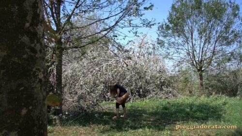 la troia nel bosco