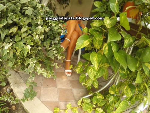 immagini destinate ai profili di cptoilette-pioggiadorata